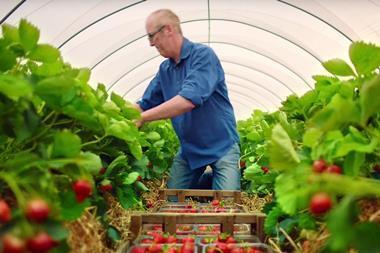 lidl strawberries ad