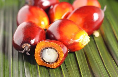 Ferrero palm oil 4