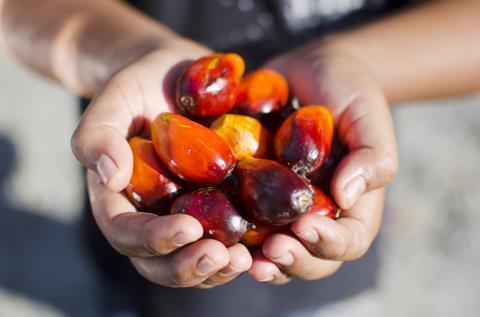 Ferrero palm oil-5 smaller