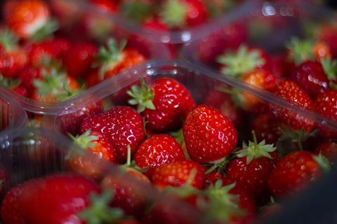 Copy of Strawberry Punnets