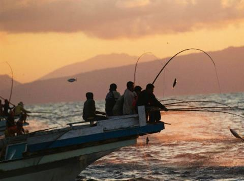 sustainble-tuna web