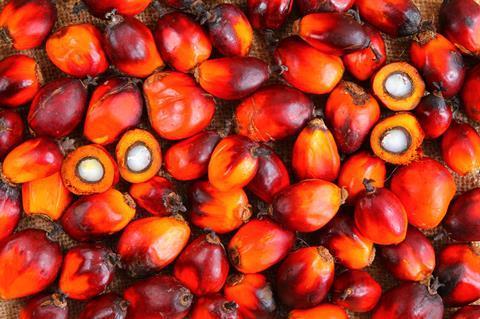Ferrero palm oil 3