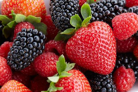 Berry Gardens berries